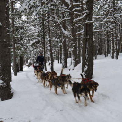 Mushing-andorra